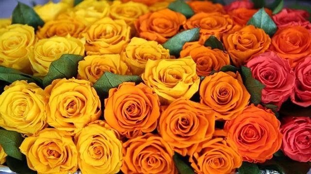 Send Flowers internationally on the Same Day
