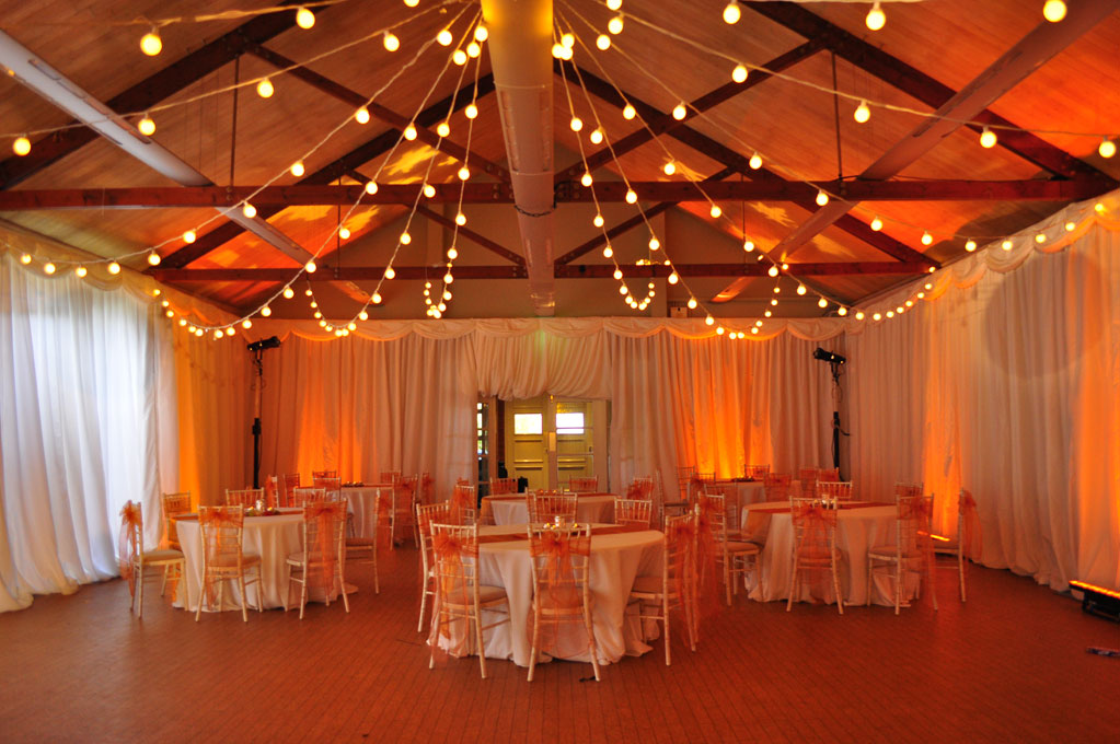 What Is Festoon Lighting And How To Use It?