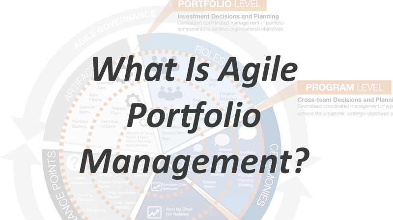 Why Is Agile Portfolio Management Important For Companies?